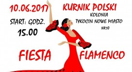 fiesta_flamenco_plus50